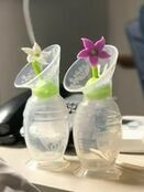 Haakaa Silicone Flower Stopper - Choose your Flower additional 12