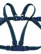 Safety 1st Safety Harness and rein additional 1