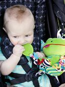 Lamaze Jibber Jabber Jake Baby Toy, Clip on Pram and Pushchair Toy, Soft Cuddly Newborn Baby Toy Frog 0+ mths additional 3