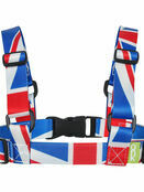 ONK Baby/Toddler Safety Harness & Reins - Choose your Design additional 18
