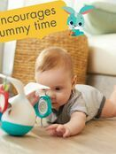 Tiny Love Tummy Time Mobile 0+ mths additional 2