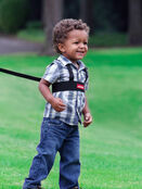 Sure Steps Toddler Security Harness additional 1