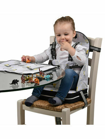 Polar Gear 5 Point Harness Booster Seat + Place Mat - Hot Air Balloons
