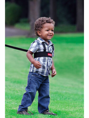 Sure Steps Toddler Security Harness